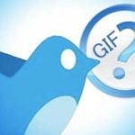 Ảnh GIF của Twitter